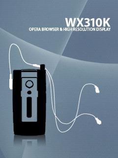 iWX310KS.png